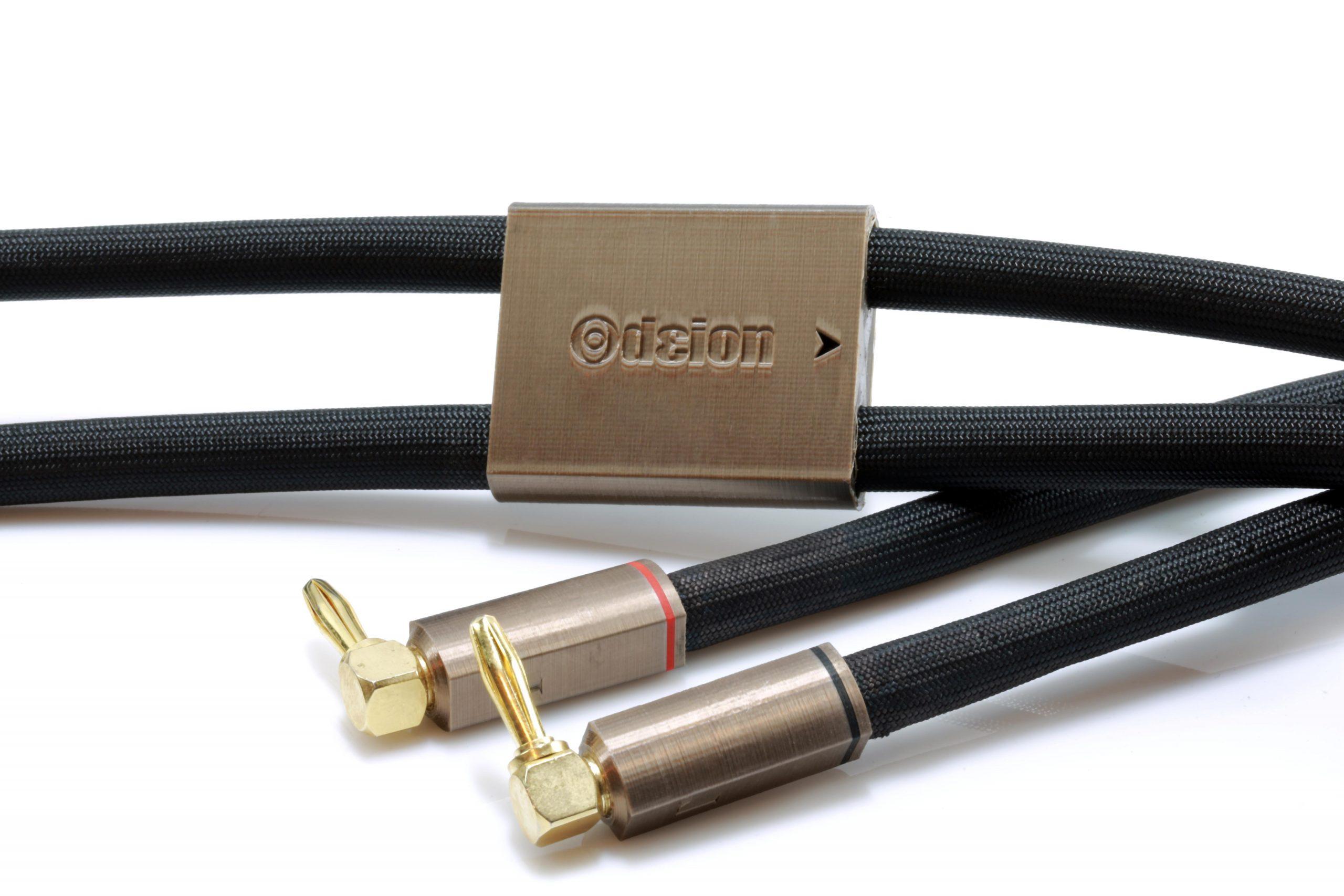 Gamma HP Speaker Odeion Cables (détail)